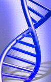 DNA model in blue colour Royalty Free Stock Photography