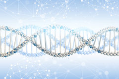DNA model Stock Image
