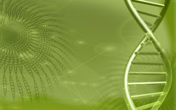 DNA model in green background Stock Photo