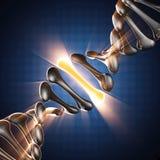 DNA-model op blauwe achtergrond Stock Afbeelding
