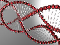 DNA model reflected. 3D render illustration of a DNA model reflected Royalty Free Stock Photography
