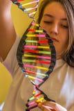 DNA model robić od plastikowych słoma Obrazy Stock