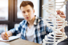 DNA model standign on the table Royalty Free Stock Image