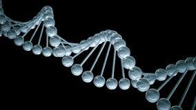 DNA-model - van een lus voorzien animatie stock illustratie