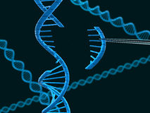 DNA modification Royalty Free Stock Photo