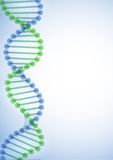DNA Molecule Background. Royalty Free Stock Image