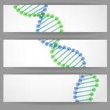 DNA Molecule Background. Stock Image