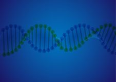 DNA Molecule Background. Stock Photo