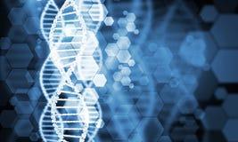 DNA molecule Royalty Free Stock Photo