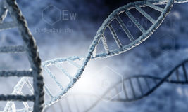 DNA molecule Royalty Free Stock Images