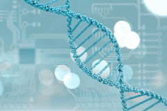 DNA molecule Stock Photo