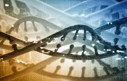 DNA molecule Stock Image