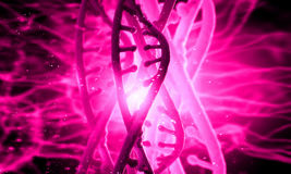 DNA molecule. Biochemistry background concept with high tech dna molecule Stock Photos