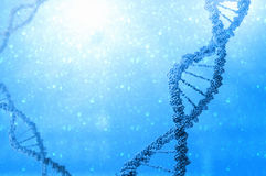 DNA molecule. Biochemistry background concept with high tech dna molecule royalty free stock photos