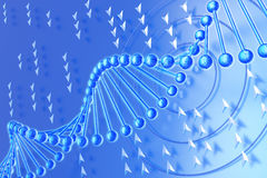DNA molecule on a blue background Royalty Free Stock Image