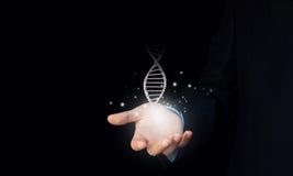Dna molecule. Close up of man holding DNA molecule in palm stock photos