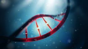 DNA molecule. Closeup of concept human genome. Royalty Free Stock Photo