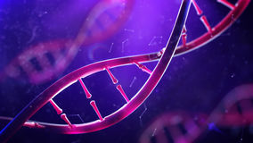 DNA molecule. Closeup of concept human genome. Stock Photos