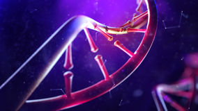 DNA molecule. Closeup of concept human genome. 3d illustration of DNA molecule. Closeup of concept human genome royalty free stock photos
