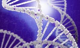 DNA molecule Royalty Free Stock Photos