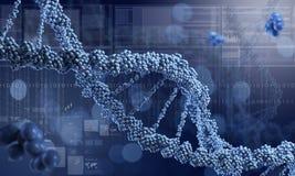DNA molecule. Concept image Stock Images