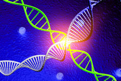 DNA molecule Stock Images