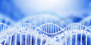 Dna molecule. Digital blue image of DNA molecule and technology concepts Royalty Free Stock Photo
