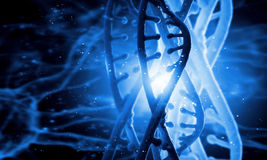 Dna molecule. Digital blue image of DNA molecule and technology concepts stock photography