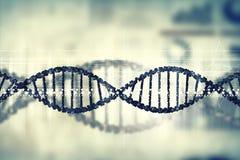 Dna molecule Royalty Free Stock Image
