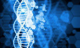 Dna molecule. Digital blue image of DNA molecule and technology concepts Stock Images