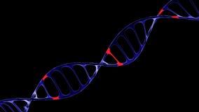 DNA-molecule, het concept kunstmatige intelligentie Royalty-vrije Stock Foto