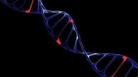 DNA-molecule, het concept kunstmatige intelligentie Royalty-vrije Stock Fotografie