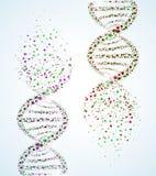 DNA molecule. Image of a DNA molecule, showing its destruction. Eps 10 vector illustration
