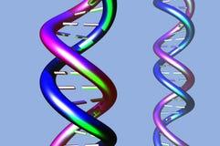 DNA molecule model (001) Royalty Free Stock Photos