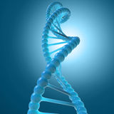 DNA molecule model Royalty Free Stock Image