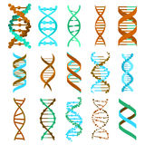 DNA molecule sign set, genetic elements and icons collection strand. Vector. Eps10 Stock Image