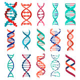 DNA molecule sign set, genetic elements and icons collection strand. Vector Stock Photos