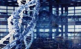 DNA molecule spiral. Mixed media Stock Photos