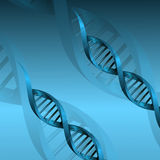 DNA molecule structure background Royalty Free Stock Photography