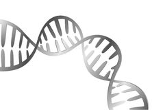 DNA molecule structure Royalty Free Stock Photos