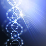 DNA molecule structure on a blue background Stock Images
