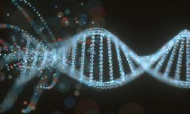 DNA Molecule Structure Stock Image