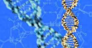 DNA molecule structure. 3D render vector illustration