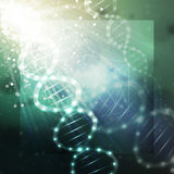 DNA molecule structure on a green background. Science vector background Stock Photos