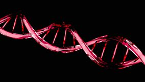 DNA molecule structure isolated on black stock footage