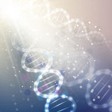 DNA molecule structure on light blue background. Science vector background Royalty Free Stock Photos