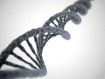 DNA molecule on white background Stock Image