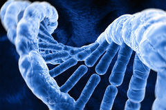 DNA molecules Royalty Free Stock Photos