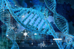 DNA molecules. On the beatiful backdrop Stock Photography