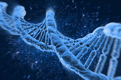DNA molecules. On the beautiful background Royalty Free Stock Photo
